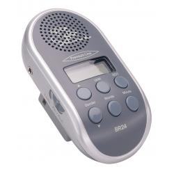 Radiolina con ricerca automatica canale e attacco MP3, grigio senza batterie