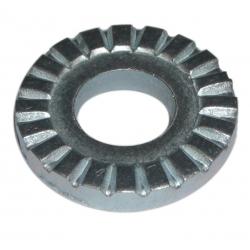 ranella dentata per ruota anteriore Cycletrack e Shimano Nexus