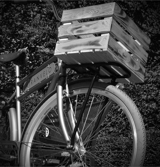 "ATRANVELO Cesto bici in legno naturale ""Woody"""