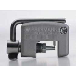 Smagliacatena Wippermann